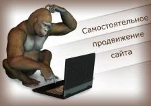 Бесплатное продвижение сайтов