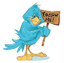 подписчики Twitter