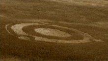 Круги на полях в виде логотипа Ubuntu