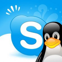 логотип Skype под Linux