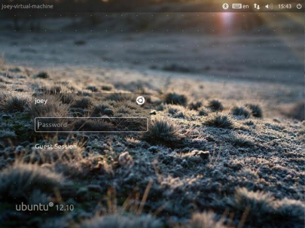 менеджер логина в Ubuntu 12.10